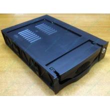 Mobile Rack IDE ViPower SuperRACK (black) internal (Армавир)