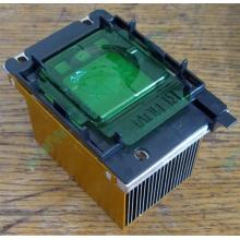 Радиатор HP p/n 279680-001 (socket 603/604) - Армавир
