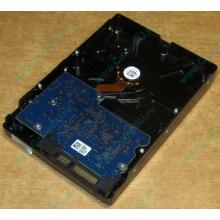 HDD 500Gb Hitachi HDS721050DLE630 донор на запчасти (Армавир)